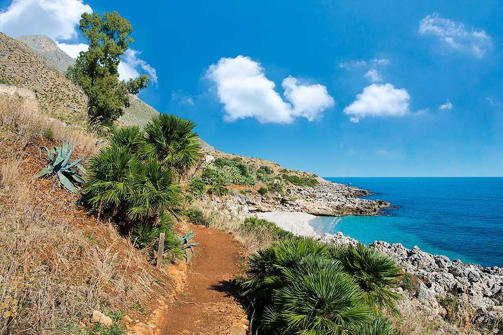 Een van de vele mini palmbomen (palme nane) in natuurreservaat Lo Zingaro en een van de strandjes