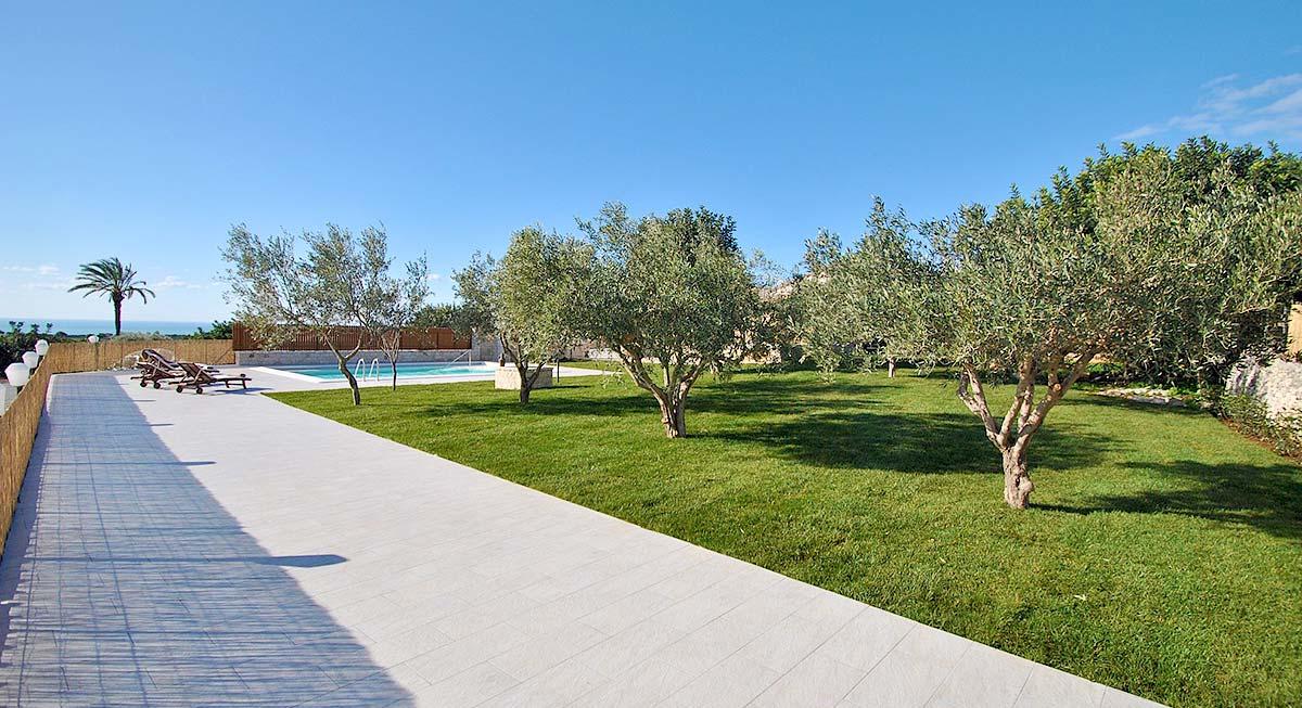 De tuin met olijfbomen